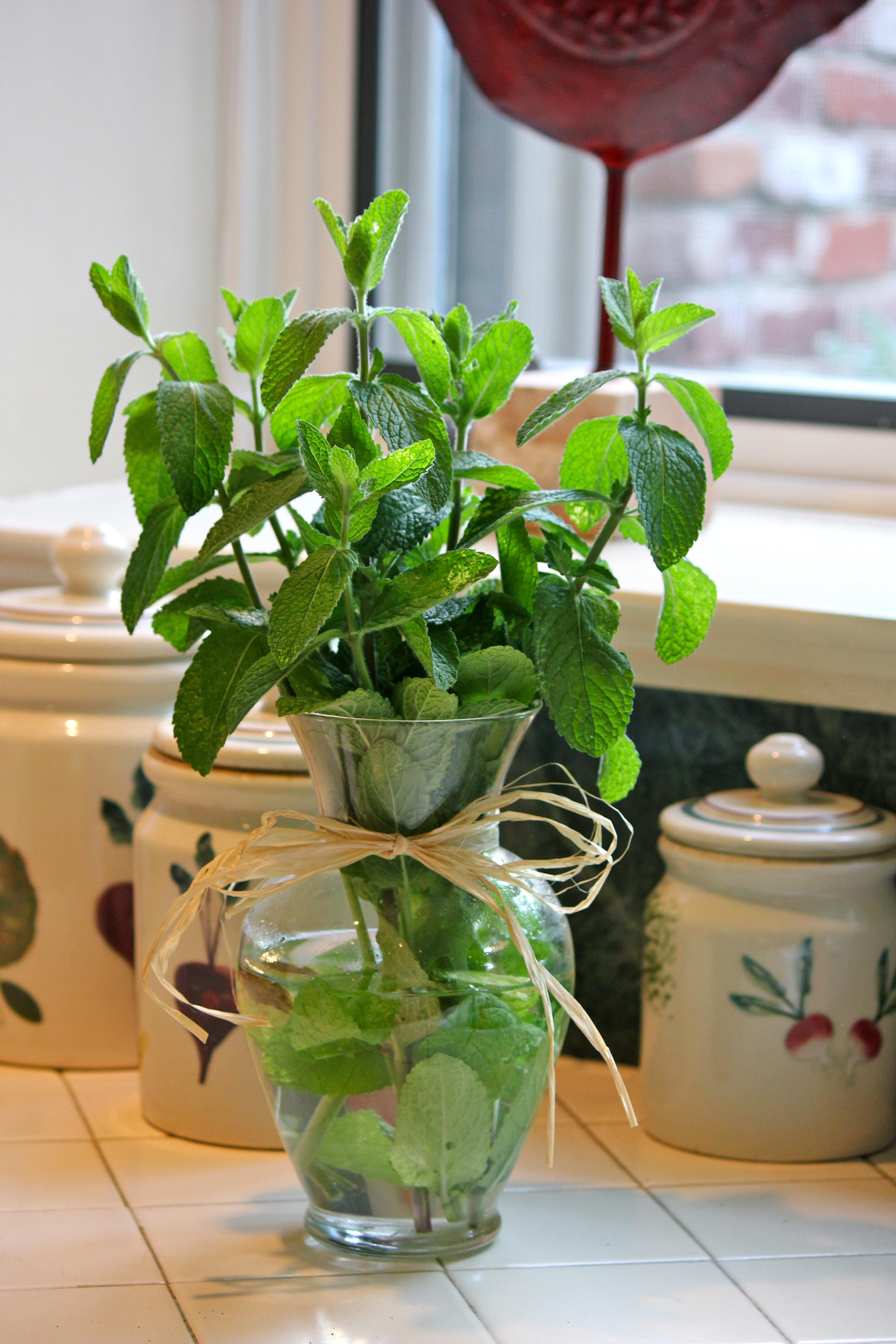Decorating With Herbs Mint Wish I Were A Housewife